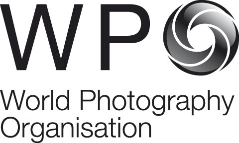 WPO_Logo exploration